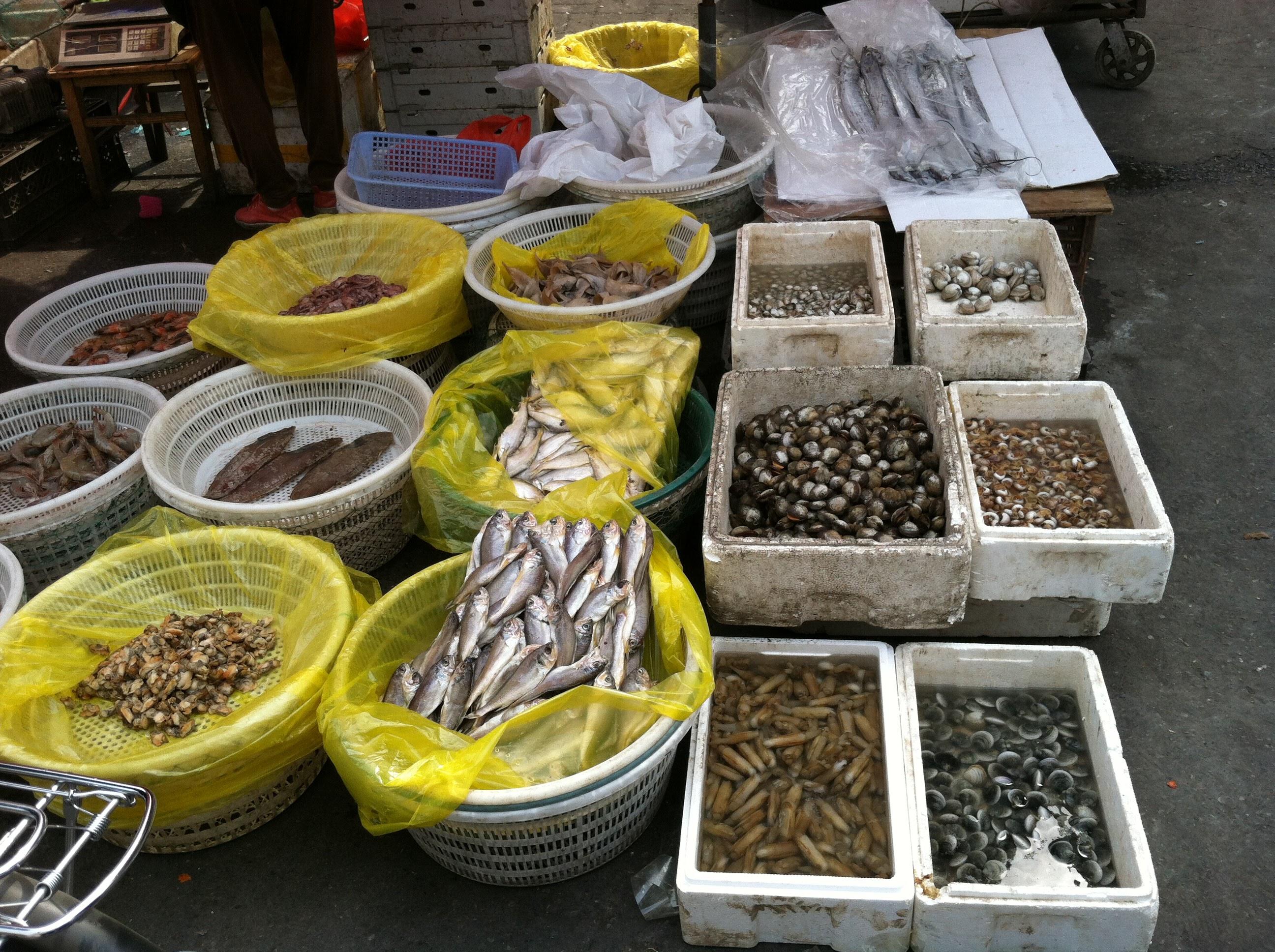 Tianjin Food Market